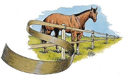 HorseGuard webshop