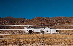 Vita elband i Arizona